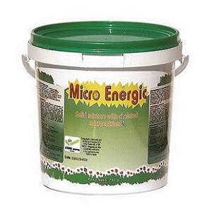 Micro Energic