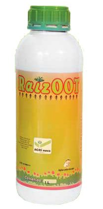 Raizoot
