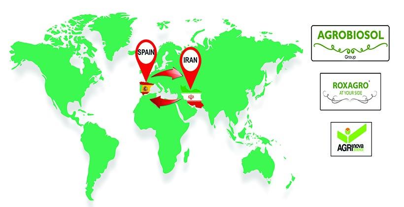 شرکت سرو سبز آسیا